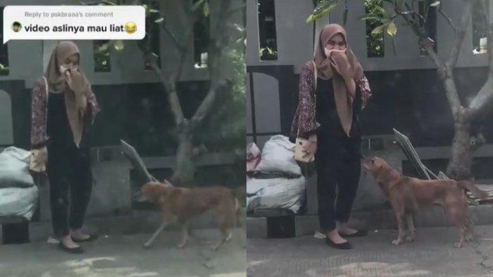 Viral Seorang Wanita Pasrah Dihampiri oleh Anjing yang Pernah Mengejar Semasa SMA Dulu